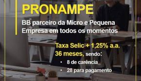 Linha de crédito: PRONAMPE